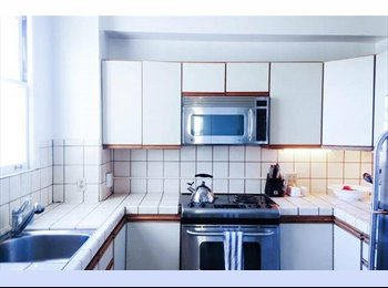 EasyRoommate US - Roommate Wanted in Large Apartment (Female) - Marina, San Francisco - $1,950 pcm