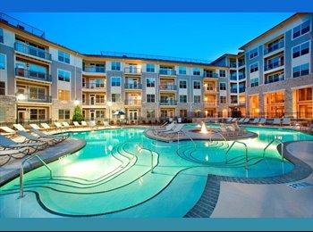 EasyRoommate US - Luxury 2-Bedroom Apartment- Seeking Roommate - Raleigh, Raleigh - $586 pcm