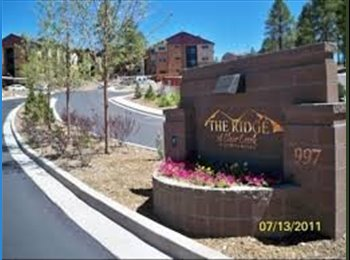 EasyRoommate US - Great room for summer rent!! - Flagstaff, Other-Arizona - $500 pcm