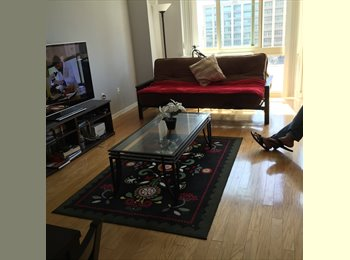 Seeking female roommate-private room - Luxury apt