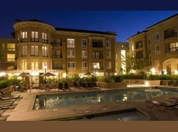 EasyRoommate US -  $1200 Furnished room w/ shared bathroom - San Jose, San Jose Area - $1,200 pcm