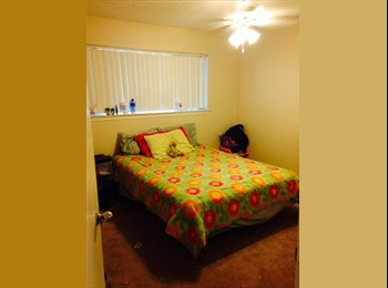 EasyRoommate US - Professional Roommate needed - Other Dallas, Dallas - $525 pcm
