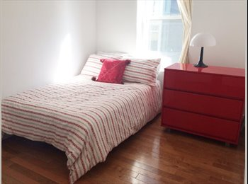 Large 1BR in 2 BR Williamsburg (Williamsburg/ Bedf