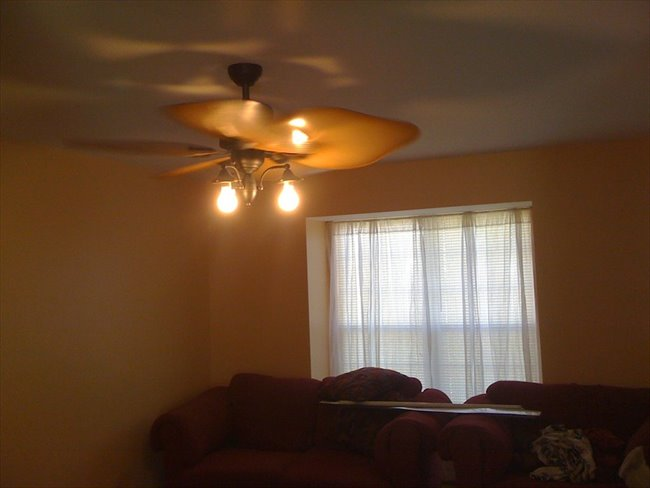 Room in Newark for rent -  - Image 1