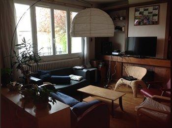 Appartager FR - Colocation du bonheur - Saint-Cyr-l'Ecole, Paris - Ile De France - 480 € / Mois
