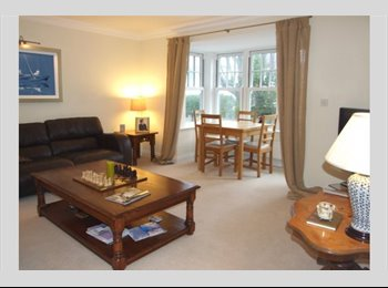 EasyRoommate UK - Luxury appartment. - Westbourne, Bournemouth - £480 pcm