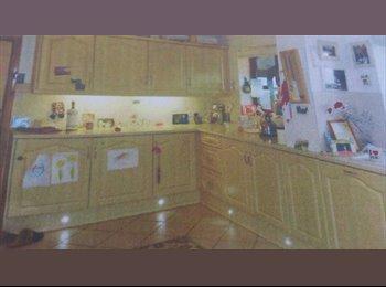 EasyRoommate UK - Rooms to rent - Acrefair, Wrexham - £220 pcm