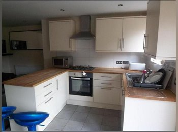 EasyRoommate UK - Rooms to Let All Inclusive - Canley, Coventry - £477 pcm