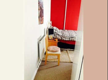 EasyRoommate UK - Large single room - Manchester, Manchester - £300 pcm