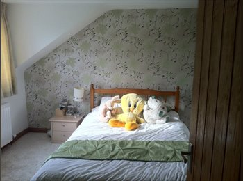 EasyRoommate UK - Double room to rent - Broxton, Chester - £400 pcm