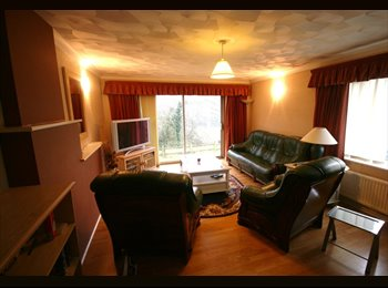 EasyRoommate UK - 2 Double rooms in friendly well maintained house - Woolston, Southampton - £410 pcm
