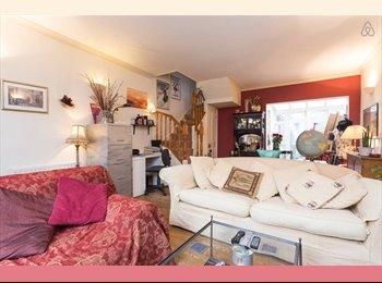 Chalk Farm/ Camden- Double Room available for Prof