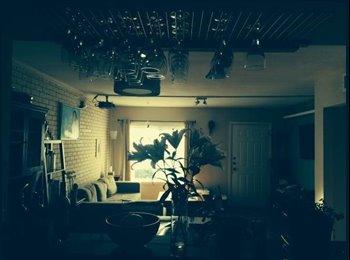 Lovely South Congress condo room