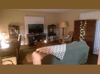 EasyRoommate US - Looking for Roommate (2/2 Apartment) - St Petersburg, St Petersburg - $550 pcm
