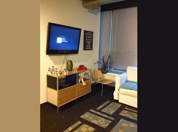 EasyRoommate US - West Loop Student Apartment - Automatic Lofts - Loop, Chicago - $854 pcm