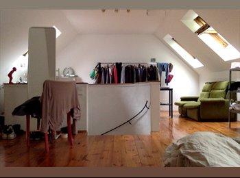 EasyWG AT - 35 qm Zimmer in 3er WG - Innenstadt, Linz - 340 € pm