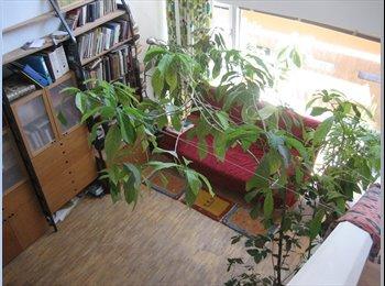 EasyWG AT - Helles Zimmer in Wohnung in Projekt  - Wien 14. Bezirk (Penzing), Wien - 350 € pm