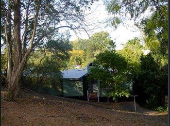 EasyRoommate AU - $125 per week Room in Paddington, QLD - Paddington, Brisbane - $125 pw
