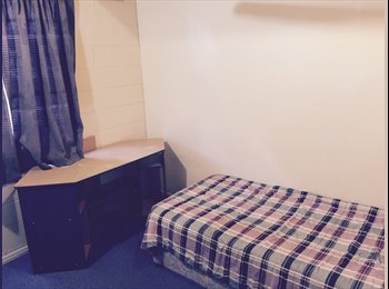 Room for rent walking distance to willows shops