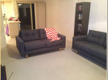 EasyRoommate AU - Looking for a sweet, friendly housemate - Calamvale, Brisbane - $190 pw