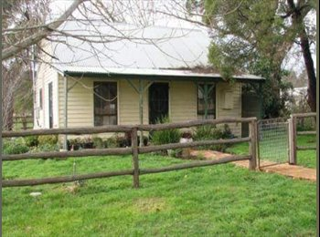 EasyRoommate AU - Room for rent, Malmsbury - Bendigo, Bendigo - $130 pw