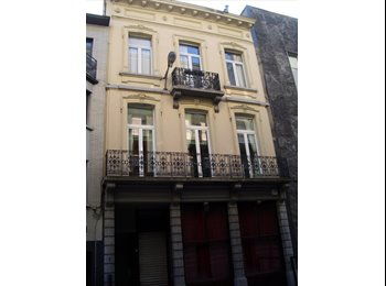 1 charming appartment to share in Bruxelles centr