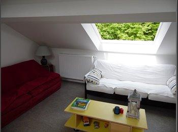 Appartager BE - Chambre à louer dans villa familiale & conviviale - Louvain-la-Neuve, Louvain-la-Neuve - 290 € / Mois