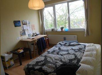 Chambre à louer dans appartement en colocation