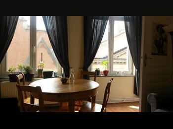 Appartager BE - Perfect cosy appartment for summer - Bruxelles-Brussel, Bruxelles-Brussel - 950 € / Mois