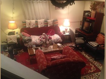 Bright,  spacious  one or two bdrm  basement apt