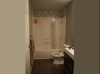 EasyRoommate CA - KINGSTON:Three Students looking for housemate $560 - Belleville Area, Getaway Country - $560 pcm