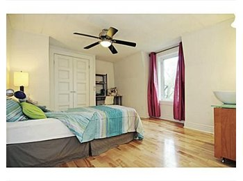 Room in Sandy Hill close to Ottawa River and Park