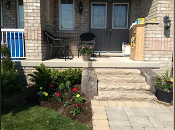 EasyRoommate CA - Single Professional - Mississauga, South West Ontario - $600 pcm