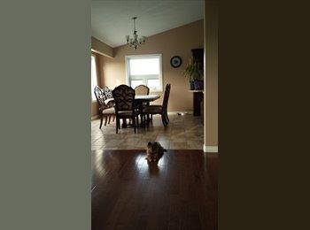 EasyRoommate CA - Room for rent in acreage home near stony plain - Stony Plain, Edmonton - $700 pcm