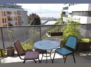 EasyWG CH - Chambre meublée Lausanne centre - Lausanne, Lausanne - 950 CHF / Mois