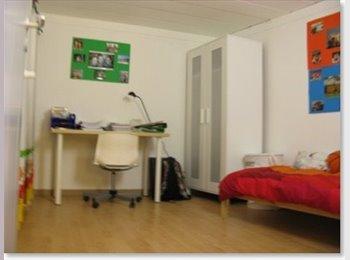 EasyKot EK - Grote kamer met studiocomfort voor 1 of 2 pers. - Centrum, Leuven-Louvain - € 530 p.m.