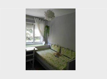 desde septiembre  2015  1 habitacion disponible