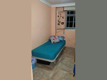 Dos habitaciones disponibles a partir de agosto