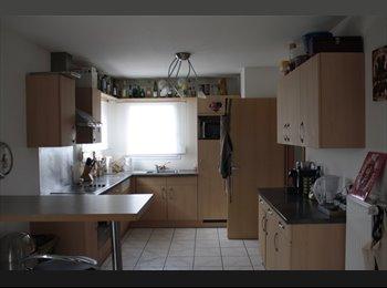 Appartager FR - Maison dans village proche de Mulhouse - Habsheim, Mulhouse - 333 € / Mois