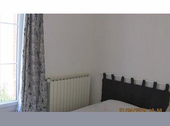 colocation 3 chambres