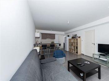 chambre disponible dans une colocation de 70m2