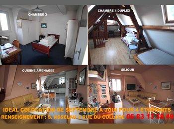 Appartager FR - Colocation 4 étudiants - Saint-Malo, Saint-Malo - 280 € / Mois