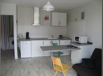 Appartement T1bis 31m2 - entièrement rénové