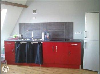 Appartager FR - Recherche colocataire Valencienne centre - Valenciennes, Valenciennes - 350 € / Mois