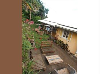 Chambre dans colocation Petite-île