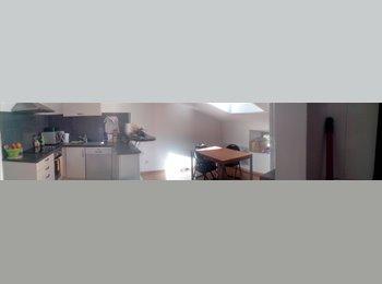 Appartager FR - Colocation/90m²/proche centre ville et tram - Mon Désert, Jeanne d'Arc, Nancy - 310 € / Mois