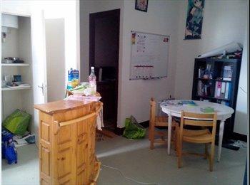 Appartager FR - Urgent colocation pour un loyer de 280 - Europole, Grenoble - 280 € / Mois