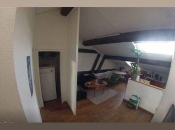 Appartager FR - Chambre dans colocation tout confort Lyon 8ème - 8ème Arrondissement, Lyon - 420 € / Mois