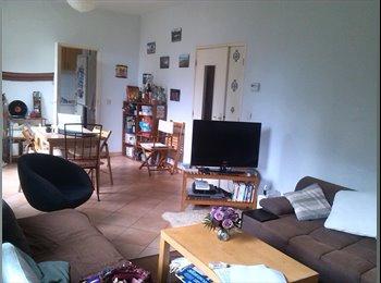 Appartager FR - 2 chambres dans colocation - Castelnau-le-Lez, Montpellier - 350 € / Mois