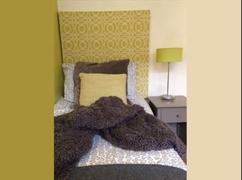 Single room in south Dublin